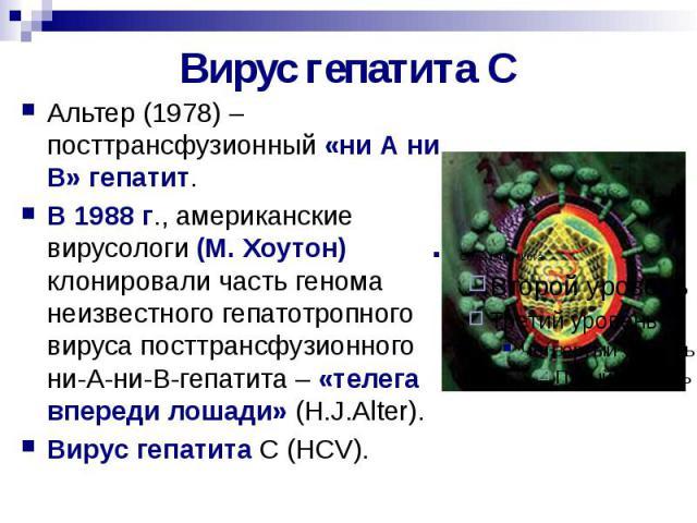 Вирус гепатита С Альтер (1978) – посттрансфузионный «ни А ни В» гепатит. В 1988 г., американские вирусологи (М. Хоутон) клонировали часть генома неизвестного гепатотропного вируса посттрансфузионного ни-А-ни-В-гепатита – «телега впереди лошади» (H.J…
