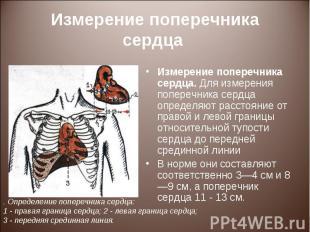 Измерение поперечника сердца. Для измерения поперечника сердца определяют рассто
