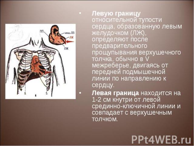 Левую границу относительной тупости сердца, образованную левым желудочком (ЛЖ), определяют после предварительного прощупывания верхушечного толчка, обычно в V межреберье, двигаясь от передней подмышечной линии по направлению к сердцу. Левую границу …