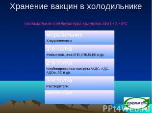 Хранение вакцин в холодильнике оптимальная температура хранения ИБП +2,+80С