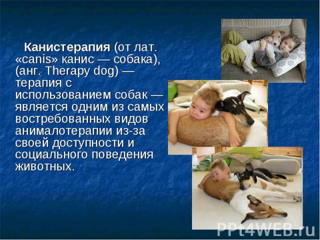 Канистерапия (от лат. «canis» канис— собака), (анг. Therapy dog)— терапия с использованием собак— является одним из самых востребованных видов анималотерапии из-за своей доступности и социального поведения животных. Канистерапия (о…
