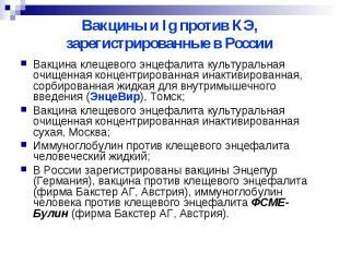Вакцины и Ig против КЭ, зарегистрированные в России Вакцина клещевого энцефалита