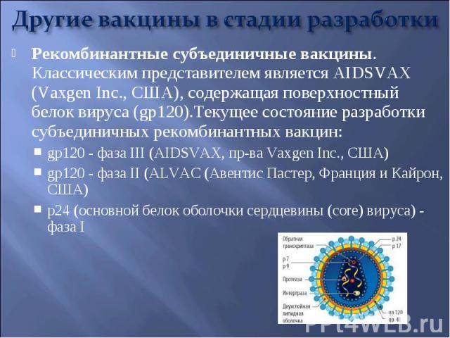 Рекомбинантные субъединичные вакцины. Классическим представителем является AIDSVAX (Vaxgen Inc., США), содержащая поверхностный белок вируса (gp120).Текущее состояние разработки субъединичных рекомбинантных вакцин: Рекомбинантные субъединичные вакци…