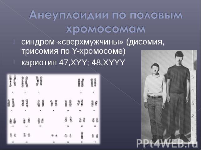 синдром «сверхмужчины» (дисомия, трисомия по Y-хромосоме) синдром «сверхмужчины» (дисомия, трисомия по Y-хромосоме) кариотип 47,XYY; 48,XYYY