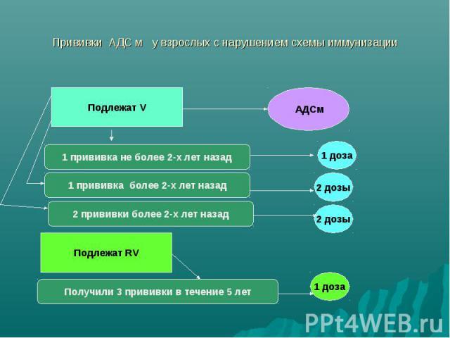 Прививки АДС м у взрослых с нарушением схемы иммунизации