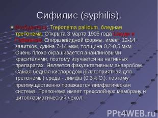 Возбудитель: Treponema pallidum, бледная трепонема. Открыта 3 марта 1905 года Ша