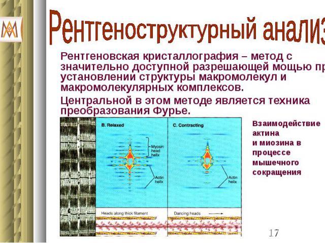 Рентгеновская кристаллография – метод с значительно доступной разрешающей мощью при установлении структуры макромолекул и макромолекулярных комплексов. Рентгеновская кристаллография – метод с значительно доступной разрешающей мощью при установлении …