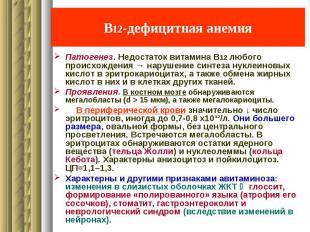 В12-дефицитная анемия Патогенез. Недостаток витамина В12 любого происхождения →