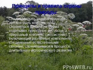 Следовательно, охрана природы должна быть комплексной. Охраняться должна не сумм