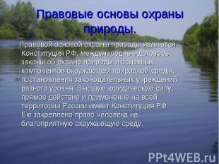 Правовой основой охраны природы являются Конституция РФ, международные договоры,