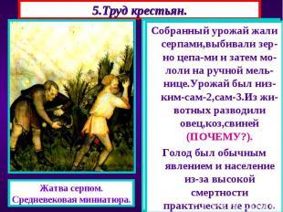 5.Труд крестьян. Основным занятием крестьян была работа на земле. Труд кресть-ян