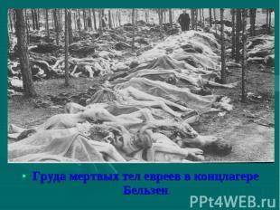 Груда мертвых тел евреев в концлагере Бельзен Груда мертвых тел евреев в концлаг