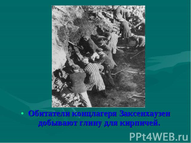 Обитатели концлагеря Заксенхаузен добывают глину для кирпичей. Обитатели концлагеря Заксенхаузен добывают глину для кирпичей.