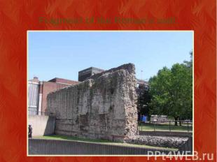 Fragment of the Roman's wall.