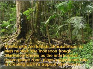 Rainforests are forests characterized by high rainfall. The monsoon trough, alte