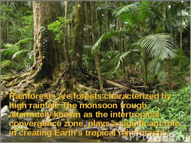 Rainforests are forests characterized by high rainfall. The monsoon trough, alternately known as the intertropical convergence zone, plays a significant role in creating Earth's tropical rain forests. Rainforests are forests characterized by high ra…