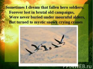 Sometimes I dream that fallen hero soldiers, Forever lost in brutal old campaign