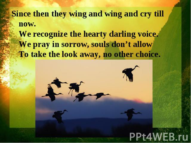 Since then they wing and wing and cry till now. We recognize the hearty darling voice. We pray in sorrow, souls don't allow To take the look away, no other choice.