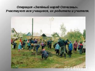 Операция «Зелёный наряд Отчизны». Участвуют все учащиеся, их родители и учителя.