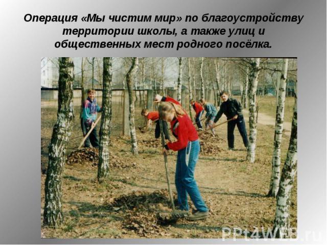 Операция «Мы чистим мир» по благоустройству территории школы, а также улиц и общественных мест родного посёлка.