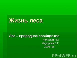 Жизнь леса Лес – природное сообщество гимназия №3 Федорова В.Г. 2006 год