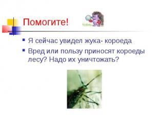Я сейчас увидел жука- короеда Я сейчас увидел жука- короеда Вред или пользу прин