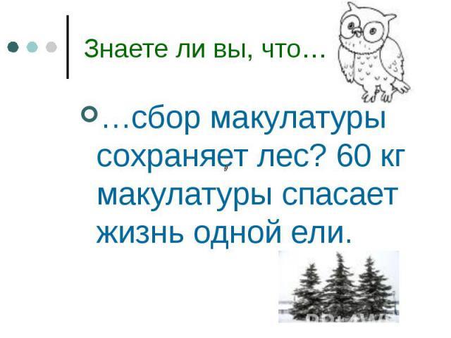 …сбор макулатуры сохраняет лес? 60 кг макулатуры спасает жизнь одной ели. …сбор макулатуры сохраняет лес? 60 кг макулатуры спасает жизнь одной ели.