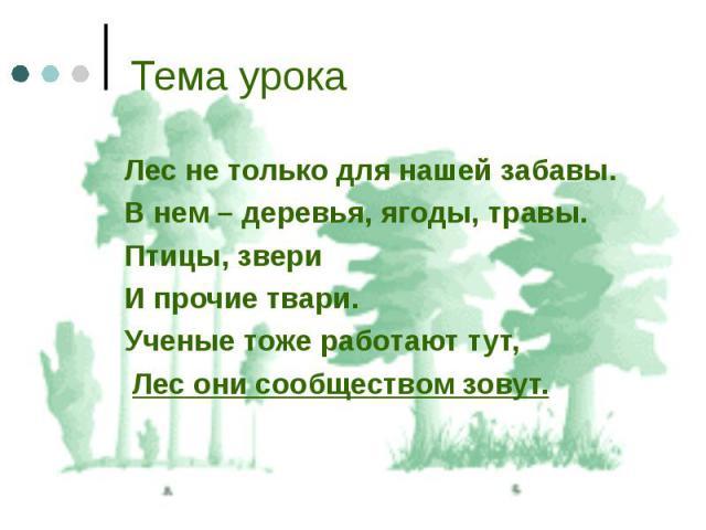 Лес не только для нашей забавы. Лес не только для нашей забавы. В нем – деревья, ягоды, травы. Птицы, звери И прочие твари. Ученые тоже работают тут, Лес они сообществом зовут.