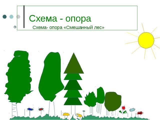 Схема- опора «Смешанный лес» Схема- опора «Смешанный лес»