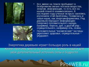 Энергетика деревьев играет большую роль в нашей жизни, поэтому, умело пользуясь