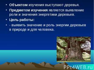 Объектом изучения выступают деревья. Объектом изучения выступают деревья. Предме