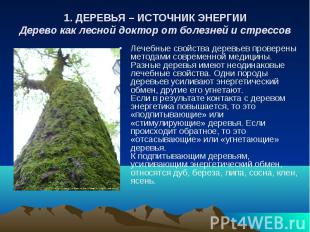 1. ДЕРЕВЬЯ – ИСТОЧНИК ЭНЕРГИИ Дерево как лесной доктор от болезней и стрессов Ле