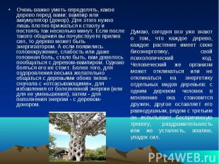 Очень важно уметь определять, какое дерево перед вами: вампир или аккумулятор (д