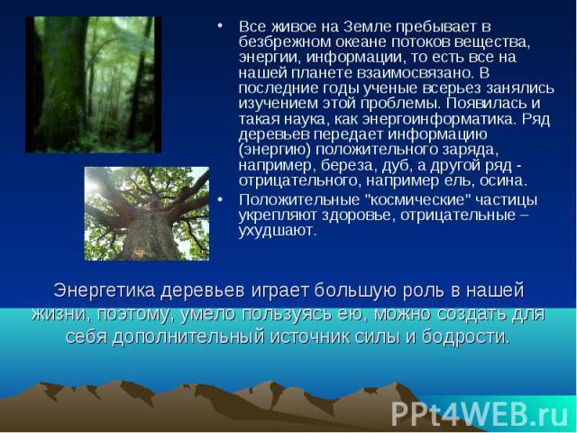 Энергетика деревьев играет большую роль в нашей жизни, поэтому, умело пользуясь ею, можно создать для себя дополнительный источник силы и бодрости. Все живое на Земле пребывает в безбрежном океане потоков вещества, энергии, информации, то есть все н…