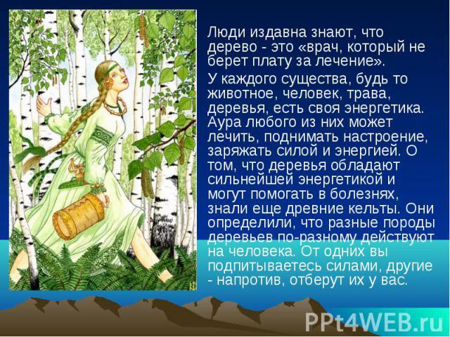 Люди издавна знают, что дерево - это «врач, который не берет плату за лечение». Люди издавна знают, что дерево - это «врач, который не берет плату за лечение». У каждого существа, будь то животное, человек, трава, деревья, есть своя энергетика. Аура…
