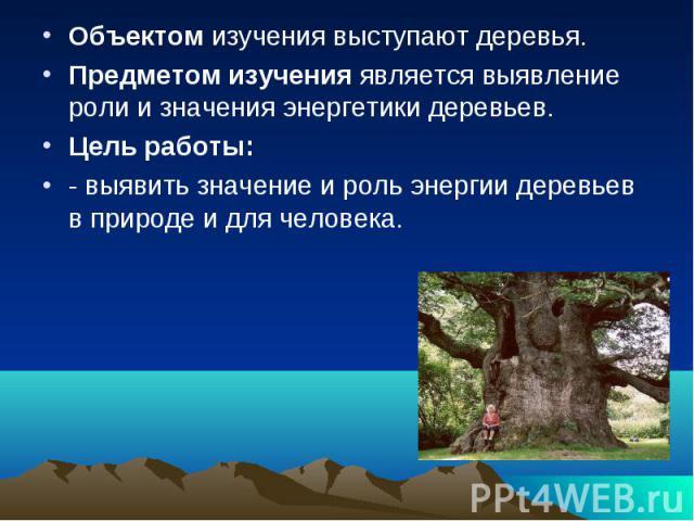 Объектом изучения выступают деревья. Объектом изучения выступают деревья. Предметом изучения является выявление роли и значения энергетики деревьев. Цель работы: - выявить значение и роль энергии деревьев в природе и для человека.