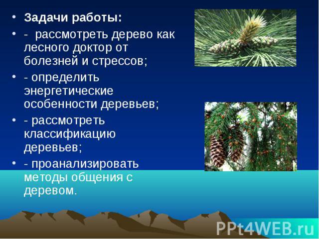 Задачи работы: - рассмотреть дерево как лесного доктор от болезней и стрессов; - определить энергетические особенности деревьев; - рассмотреть классификацию деревьев; - проанализировать методы общения с деревом.