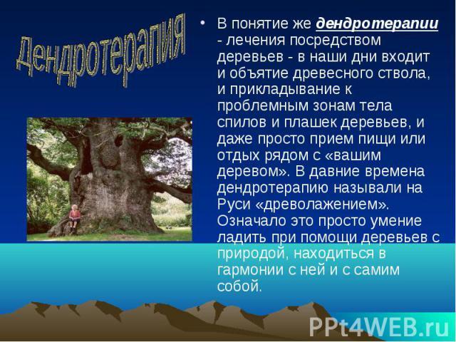 В понятие же дендротерапии - лечения посредством деревьев - в наши дни входит и объятие древесного ствола, и прикладывание к проблемным зонам тела спилов и плашек деревьев, и даже просто прием пищи или отдых рядом с «вашим деревом». В давние времена…