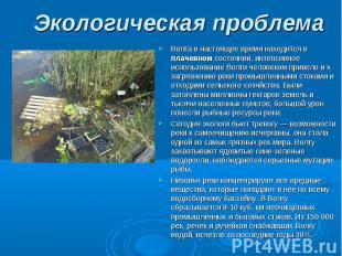 Волга в настоящее время находится в плачевном состоянии, интенсивное использован