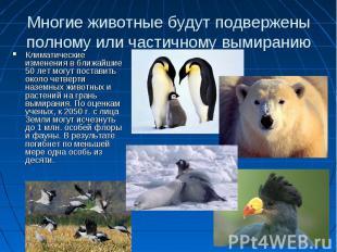 Многие животные будут подвержены полному или частичному вымиранию Климатические
