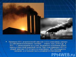 Примерно 65% антропогенной эмиссии СО2 в атмосферу связано со сжиганием ископаем