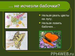 Нельзя рвать цветы на лугу; Нельзя рвать цветы на лугу; Нельзя ловить бабочек…