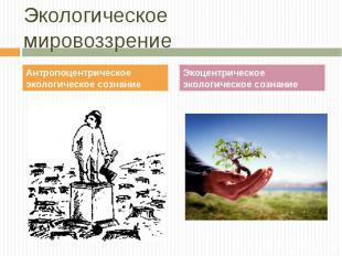 Антропоцентрическое экологическое сознание Антропоцентрическое экологическое соз