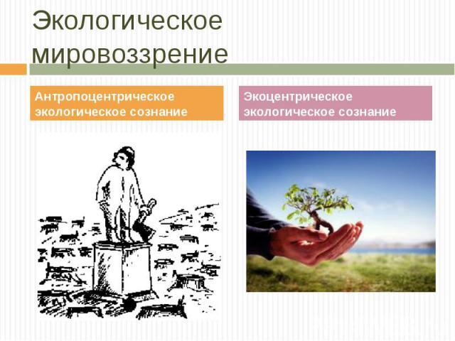 Антропоцентрическое экологическое сознание Антропоцентрическое экологическое сознание