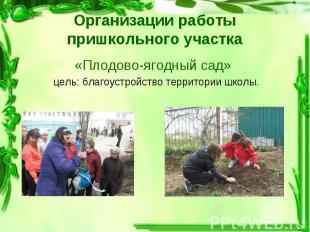 «Плодово-ягодный сад» «Плодово-ягодный сад» цель: благоустройство территории шко