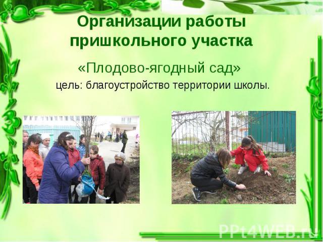 «Плодово-ягодный сад» «Плодово-ягодный сад» цель: благоустройство территории школы.