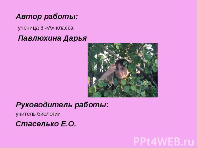 Автор работы: Автор работы: ученица 8 «А» класса Павлюхина Дарья Руководитель работы: учитель биологии Стаселько Е.О.