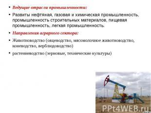 Ведущие отрасли промышленности: Развиты нефтяная, газовая и химическая промышлен