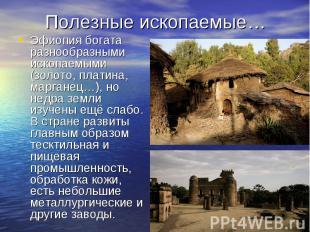 Эфиопия богата разнообразными ископаемыми (золото, платина, марганец…), но недра