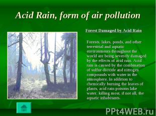 Forest Damaged by Acid Rain Forest Damaged by Acid Rain Forests, lakes, ponds, a